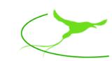 Logo Oiseau MG Psy